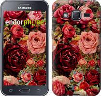 """Чехол на Samsung Galaxy J2 J200H Цветущие розы """"2701c-190"""""""