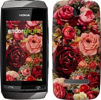 """Чехол на Nokia Asha 305 / 306 Цветущие розы """"2701u-248"""""""