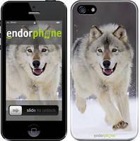 """Чохол на iPhone SE Біжить вовк """"826c-214"""""""