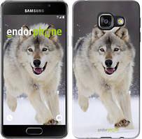 "Чохол на Samsung Galaxy A3 (2016) A310F Біжить вовк ""826c-159"""