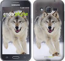 """Чехол на Samsung Galaxy J2 J200H Бегущий волк """"826c-190"""""""