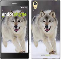 "Чехол на Sony Xperia Z5 Бегущий волк ""826u-274"""