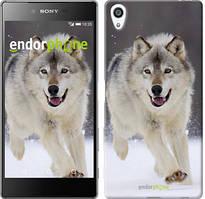 """Чохол на Sony Xperia Z5 Premium Біжить вовк """"826u-345"""""""