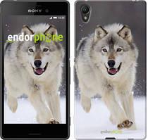 """Чохол на Sony Xperia XA Біжить вовк """"826c-399"""""""