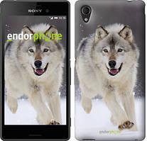 """Чохол на Sony Xperia C4 Біжить вовк """"826u-295"""""""