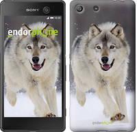 """Чохол на Sony Xperia M5 Біжить вовк """"826u-217"""""""