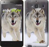 "Чехол на Xiaomi Redmi 2 Бегущий волк ""826c-98"""