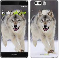 "Чохол на Huawei P9 Plus Біжить вовк ""826u-300"""