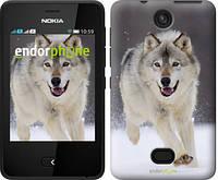 """Чехол на Nokia Asha 501 Бегущий волк """"826u-209"""""""