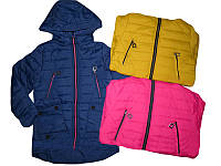 Куртка демисезонная для девочек, Grace, размеры 134-164, арт. G-61189