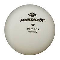Бесшовные пластиковые мячи Schildkröt 1 star 40+ (1 шт.)