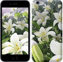 """Чохол на iPhone 6 Білі лілії """"2686c-45"""""""