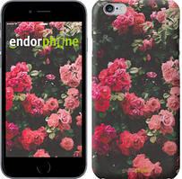 "Чохол на iPhone 6 Кущ з трояндами ""2729c-45"""