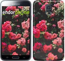 "Чехол на Samsung Galaxy S5 Duos SM G900FD Куст с розами ""2729c-62"""