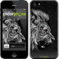 "Чехол на iPhone SE Лев ""1080c-214"""