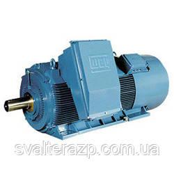 Электродвигатели высокого напряжения серии HGF