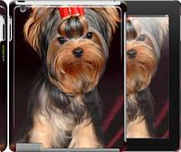 """Чехол на iPad 2/3/4 Йоркширский терьер """"929c-25"""""""