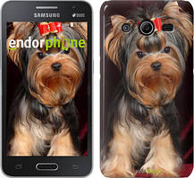 "Чохол на Samsung Galaxy Core 2 G355 Йоркширський тер'єр ""929c-75"""