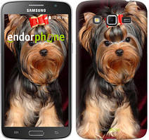 "Чохол на Samsung Galaxy Grand 2 G7102 Йоркширський тер'єр ""929c-41"""