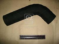 Рукав радиатора отводящий ЕВРО-2 (пр-во Россия) 6520-1303010