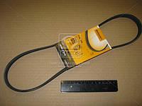 Ремень поликлиновой (Пр-во ContiTech) 5PK950