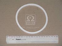 Кольцо масляного фильтра ЕВРО (бел.) (пр-во ГарантАвто) 7406-1012086