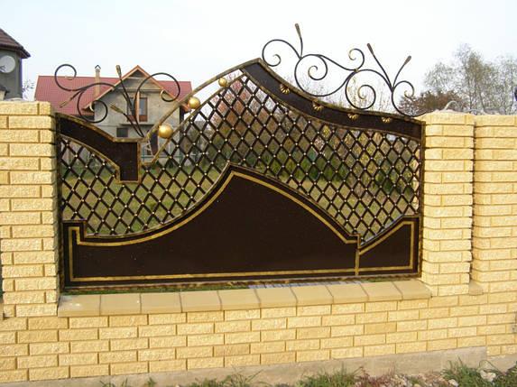 Заборы кованые Світлана, фото 2