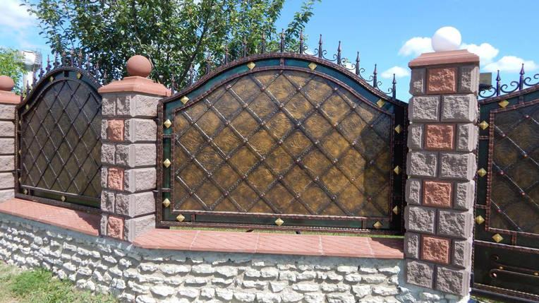 Заборы кованые Адреналін, фото 2