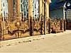 Заборы кованые Астра