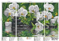 """Схема для полной зашивки бисером - Триптих """"Орхидеи"""""""