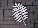 Вырубка из картона. Лист сумаха, 48х70 мм, фото 2