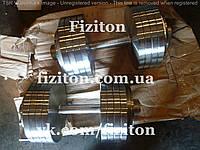 Гантели 2 по 50 кг стальные, фото 1