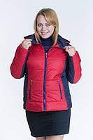 Женская осенняя куртка №15 красный-синий (красный-черный. чёрно-красный)