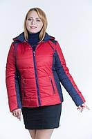 Куртка женская LeveL - весенняя, 58-64