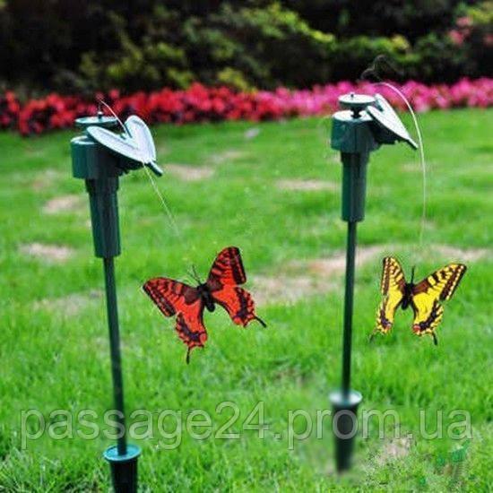 """Летающая бабочка на солнечной батарее - Интернет-магазин """" Пассаж """" в Днепре"""