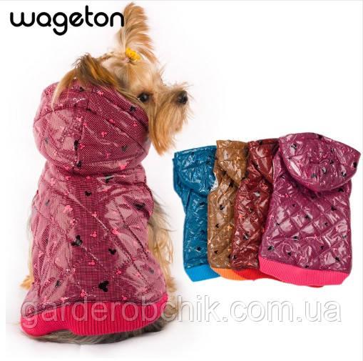 Куртка для собаки Wageton. Одежда для собак