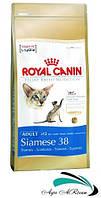 Royal Canin Siamese 10 кг - корм для сиамских котов  ( от 12 месяцев)