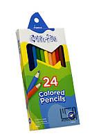 Карандаши цветные шестигранные Colorite 24 цвета Marco