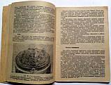 Техническое описание и правила эксплуатации гирокомпасов «Курс-4» и «Амур-2», фото 7
