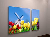 Модульная картина тюльпаны Голландия