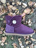 Женские замшевые мини-угги из овчины с пуговицей -кристалл фиолетовые,40