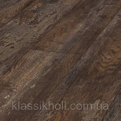 Ламинат Kronotex (Кронотекс) коллекция Exquisit (Эксквизит) - Дуб Лискам (Oak Liskamm) - D 4790, фото 2