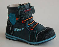 Calorie арт.KD2182-5L синий.tiger     Демисезонные ботинки для мальчиков.
