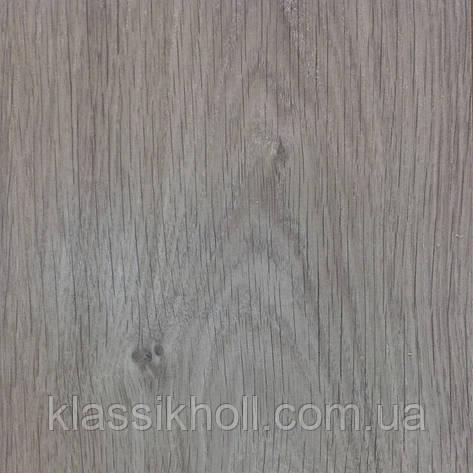 Ламинат Egger (Эггер) Classic Дуб Кортина светло-серый - H2008/1149828, фото 2