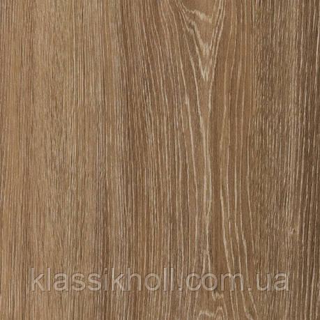 Ламинат Kastamonu (Кастамону) коллекция Floorpan Black (Флорпан Блэк) Дуб Прайс FP0045, фото 2