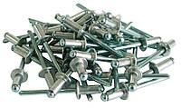 Слепые заклепки алюминиевые, 4.8*16мм ,50шт.