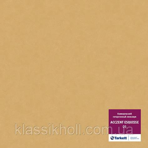 Линолеум коммерческий Tarkett ACCZENT ESQUISSE 05 (коммерческий гетерогенный) КМ2, фото 2