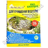 Біохім-сервіс Kalius для очистки водоемов 20 г