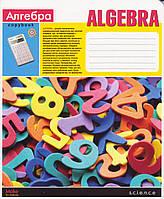 Тетрадь 48 л.клетка Алгебра