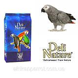 Корм для крупных попугаев + арахис (DELI NATURE-BEYERS BELGIUM) № 60, фото 5